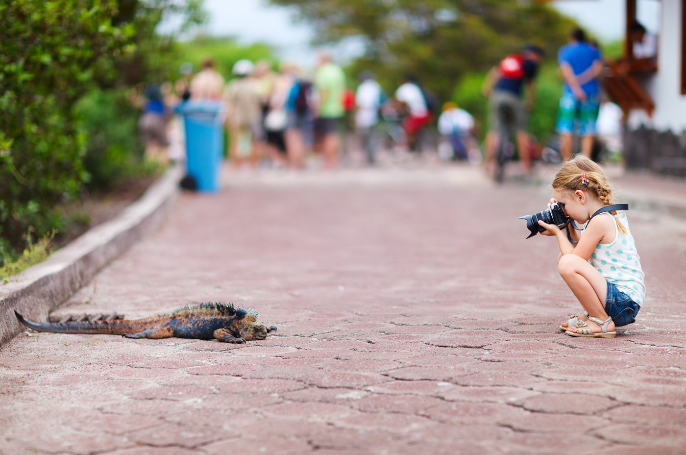 Girl photographing an Iguana in the Galapagos