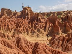 Colombia_South-westColombia_Tatacoadesert_ClaireMilner-27