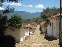 col14-country-walk-on-the-camino-real-walk-free