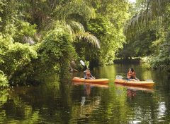 cos11-kayaking-and-wildlife-spotting-free-cre